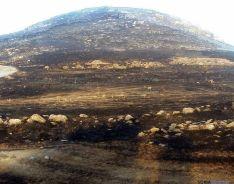 Área quemada en el mismo Moncayo./SN