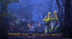 Personal anti incendios sofocando un fuego en la provincia de Soria. / SN