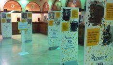 Exposición en la oficina de Correos en Soria capital.