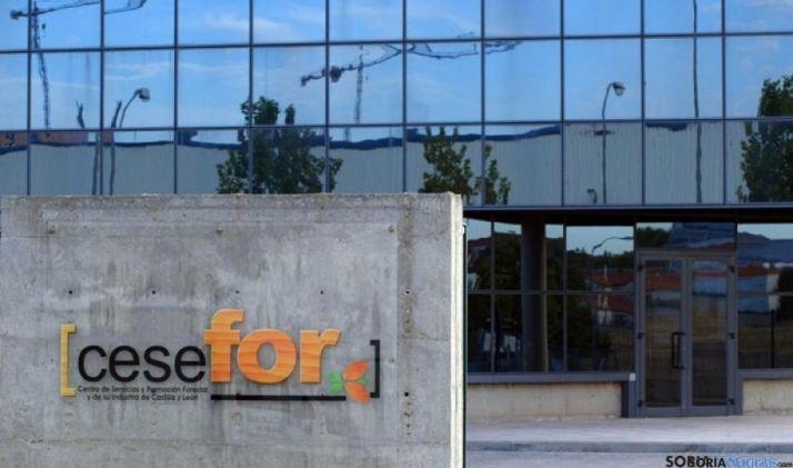 Entrada al edificio del Cesefor./SN