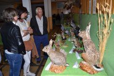 Exposición de fauna y trabajo tradicional en el monte. /SN