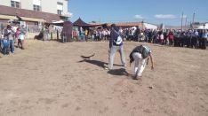 Demostración de cetrería en la feria ganadera de Borobia.