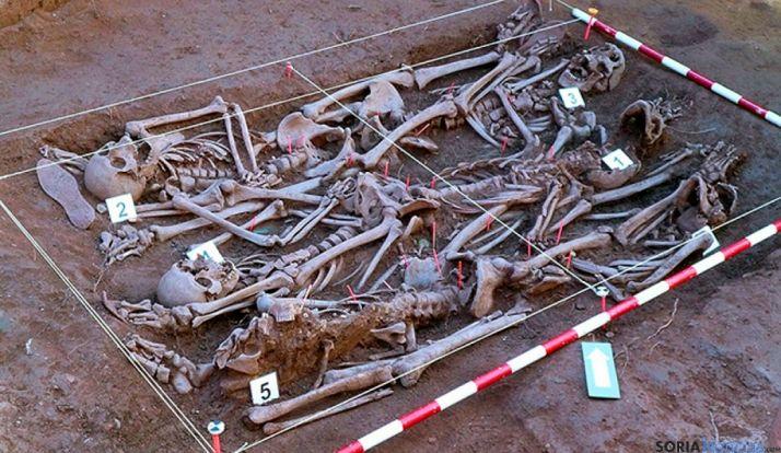 Restos de los fusilados en Barcones encontrados por la ASRD. / ASRD