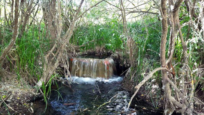 La arqueta denunciada por los ecologistas. / ASDEN