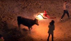 La joven ante el animal./mundotoro.com