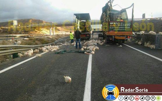 Imagen del accidente. /Radar Soria