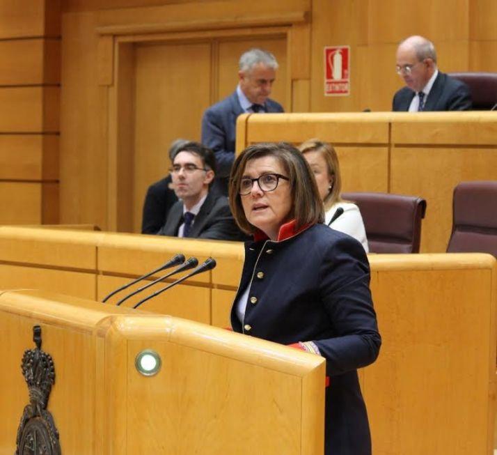 Mar Angulo en una intervención en el Senado.