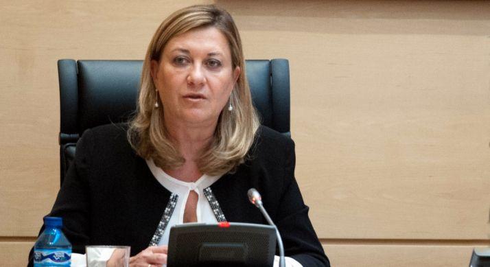 Pilar del Olmo, consejera de Economía y Hacienda. / Jta.