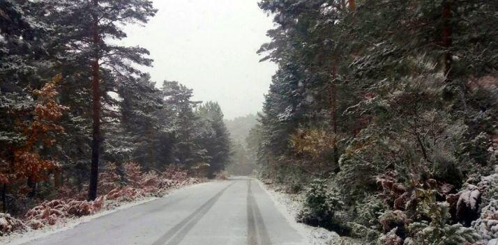 Pista forestal en Urbión hoy./AS