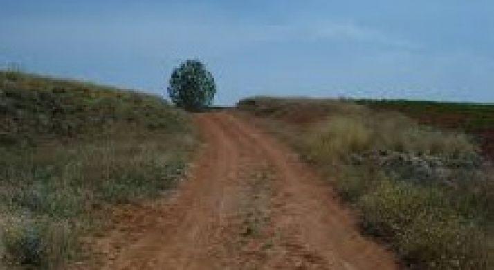 Camino Rural en Valderrodilla