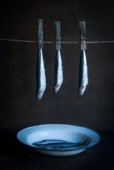 Ganadores III Certamen Fotográfico Dieta Mediterránea