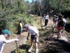 Imagen de voluntarios/ SN