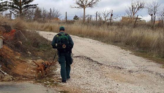 Un guía canino de la Guardia Civil con su perro durante la búsqueda.