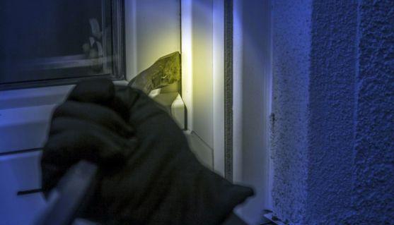Un caco apalancando una puerta en un domicilio.