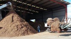 Aportará conocimientos en biomasa./Subdeleg.