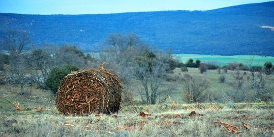 Una paca de biomasa en un monte de la provincia. / SN