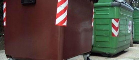 El contenedor marrón, para vegetales.