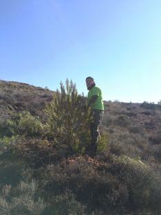 Imagen de las jornadas medioambientales de Fuentelmonge. /Ayto. Fuentelmonge
