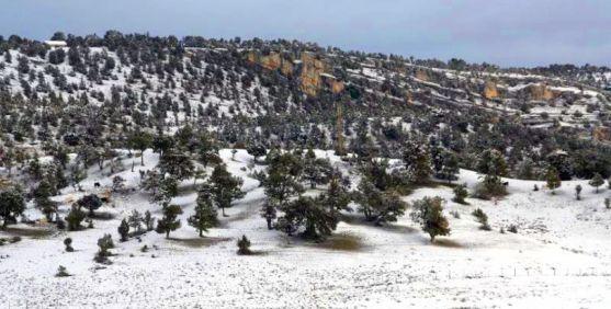 Imagen invernal del Sabinar. /SN