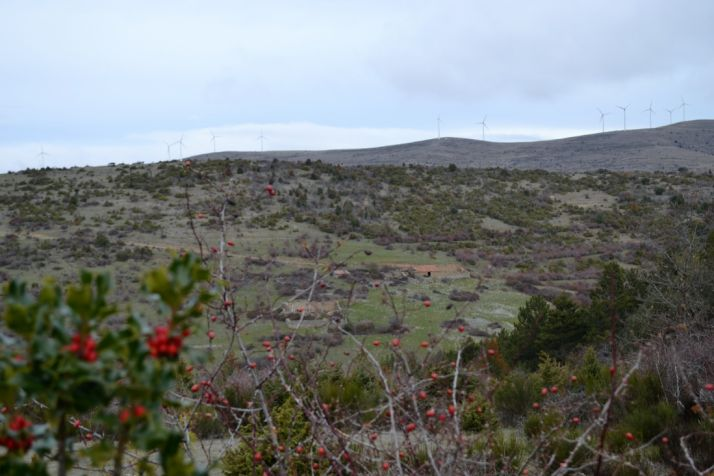 Paisaje navideño soriano, en la comarca de Tierras Altas./ SN