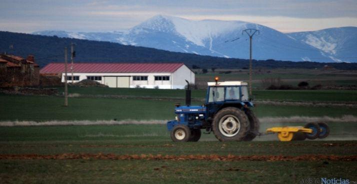 Labores agrícolas cerca del Moncayo./SN