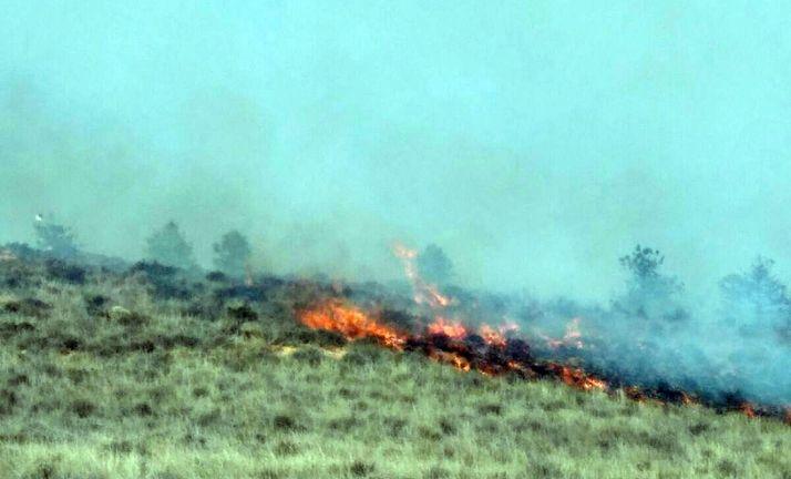 Imagen de la zona incendiada. /SN