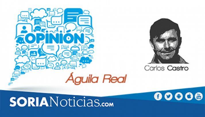 Foto 1 - Águila Real