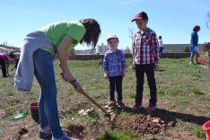 Plantación en el parque del Bosque Infantil. /SN