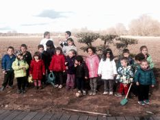 Celebración del día del árbol en Quintana Redonda