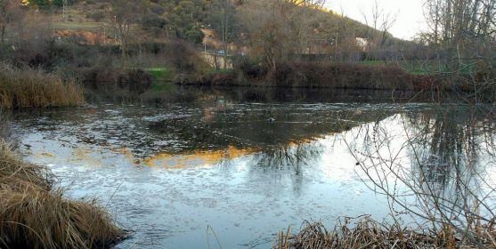Imagen reciente del río a su paso por Soria. /ASDEN