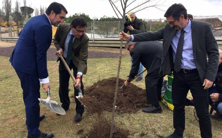 Jornada institucional del Día de los Bosques./Jta.