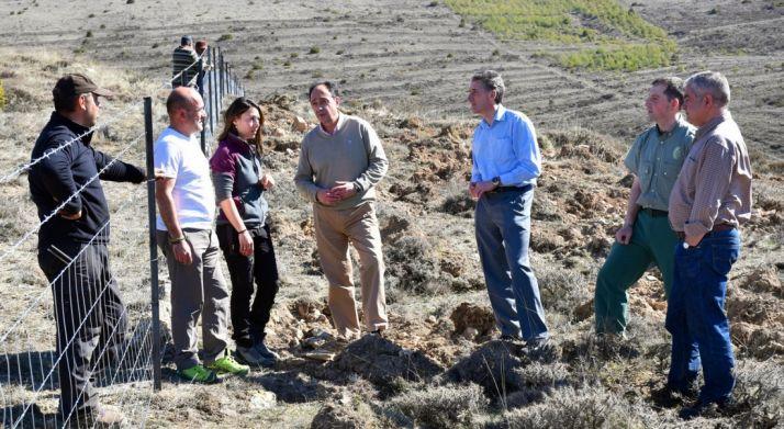 El delegado territorial este lunes en una zona reforestada, en Carrascosa de la Sierra