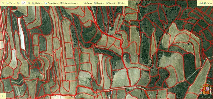 Visor de parcelas en un área soriana./SIGPAC