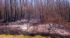 Imagen del terreno incendiado. /SN