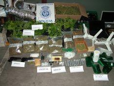 Las plantas y las sustancias aprehendidas podrían alcanzar los 150.00 euros en el mercado ilegal./CNP