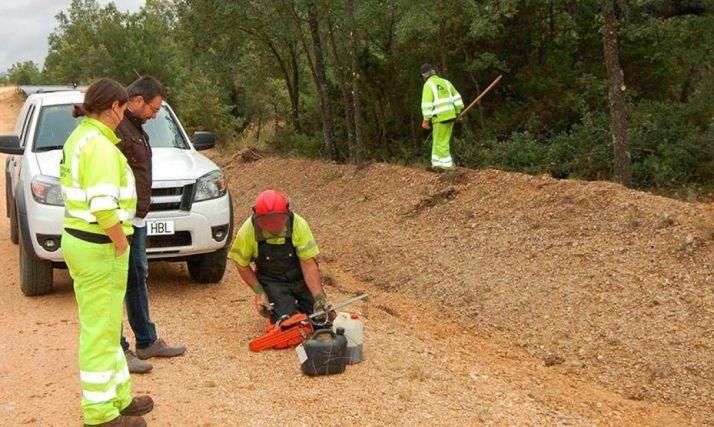 Brigadas Forestales en Soria
