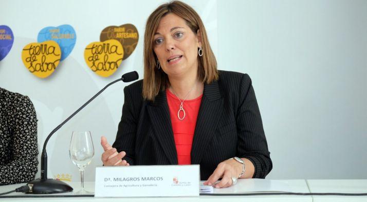 La consejera Milagros Marcos en la presentación del Informe Nielsen. /Jta.