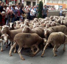 Imagen del paso del ganado por la capital./SN