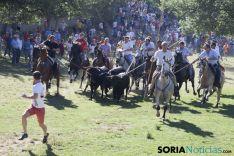 Comprilla 2017 / María Ferrer