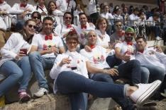 Viernes de Toros 2017 / María Ferrer