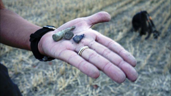 Restos óseos extraidos de la fosa común de la localidad. /ASRD