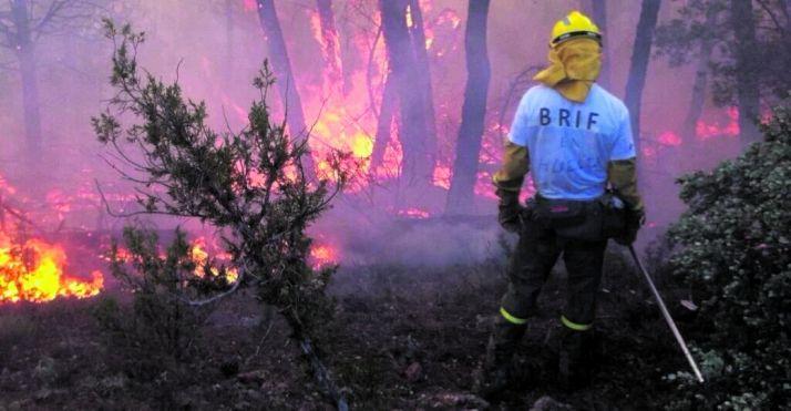 Este verano se incrementa el riesgo de incendios forestales.