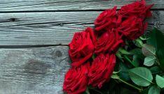 Un ramo de rosas cultivadas en Garray./AR