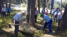 Los vecinos han recordado antiguas tareas tradicionales del monte. / S.N.