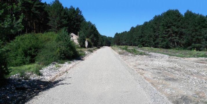 Imagen del camino natural.