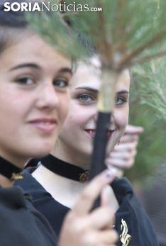 Una de las imágenes de este miércoles en Vinuesa./ María Ferrer