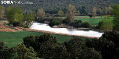 El Duero antes de llegar a Almazán este pasado mayo./SN