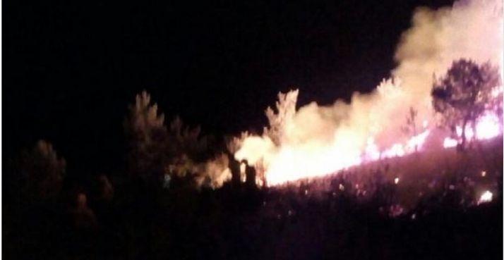 Imagen el fuego en Berlanga. / APAMCYL
