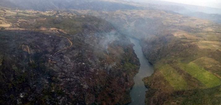 Foto 1 - El incendio de Fermoselle, en nivel 1, lleva arrasadas 2.000 hectáreas