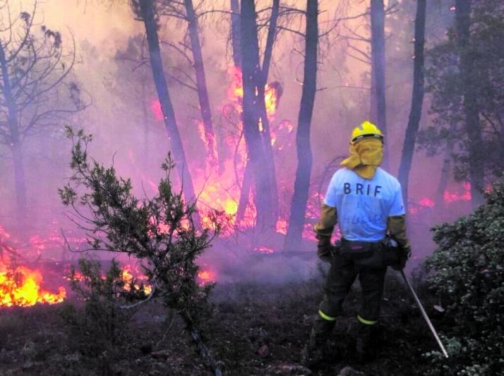 Foto 1 - Cien personas trabajan para controlar el incendio forestal de Hoyocasero